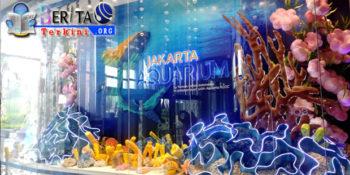 Perjalanan Wisata di Jakarta Aquarium Hadirkan Beragam Satwa Air Langka