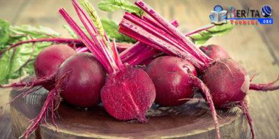 Alami Cacingan, Berikut 4 Jenis Makanan Yang Perlu Dikonsumsi Secara Teratur