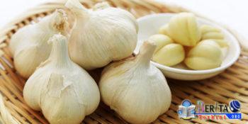 Selain Dipercaya Menangkal Penyebaran Kanker, Bawang Putih Mampu Turunkan Kolesterol Jahat